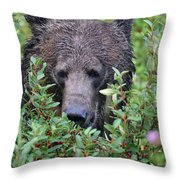 Grizzly In The Berry Bushes Throw Pillow