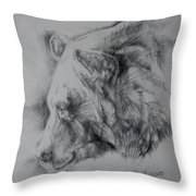 Grizzly Sketch Throw Pillow