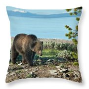 Grizzly Sow At Yellowstone Lake Throw Pillow