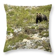 Grizzly Watching People Watching Grizzly No. 3 Throw Pillow