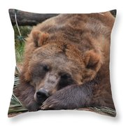 Grizzly's Naptime Throw Pillow