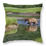 Grizzy Bear Crossing The River Throw Pillow