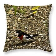 Grosbeak With Quizzical Look Throw Pillow