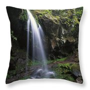 Grotto Falls In The Great Smokies Throw Pillow