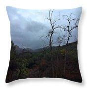 Grotto Trail In Rain Throw Pillow