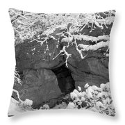 Grotto Throw Pillow