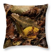 Ground Color Throw Pillow