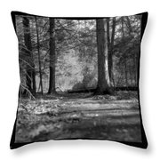 Ground Floor Throw Pillow