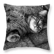 Ground Work Throw Pillow