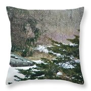 Grounded Throw Pillow by Stephanie Calhoun