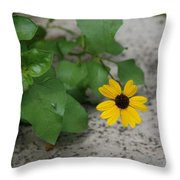 Grounded Sunflower Throw Pillow
