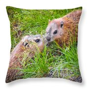 Groundhog Mother Love Throw Pillow