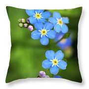 Group Of Blue Flowers Forget-me-not Throw Pillow