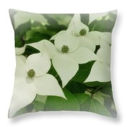 Group Of Chinese Dogwoods Throw Pillow