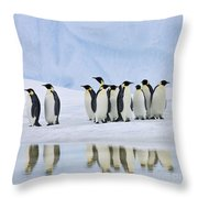 Group Of Emperor Penguins Throw Pillow