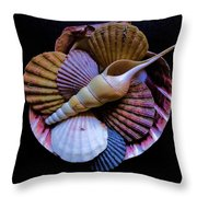 Group Of Shells #1 Throw Pillow