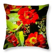 Group Of Small Red Zinnia's Throw Pillow