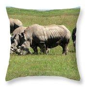 Group Of White Rhino Throw Pillow