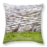 Group Shot Throw Pillow