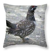 Grouse Throw Pillow