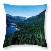 Grouse Mountain Throw Pillow