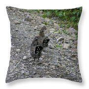 Grouse Pair Throw Pillow
