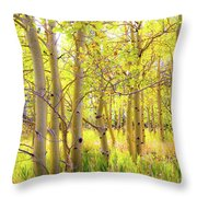 Grove Of Aspens On An Autumn Day Throw Pillow