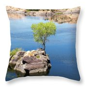 Grow Where You're Planted Throw Pillow