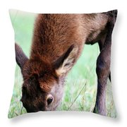 Growing Fast  Throw Pillow