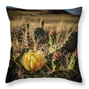 Growing From Volcanos Throw Pillow