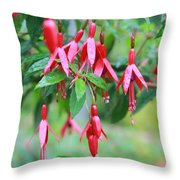 Growing In Red And Purple Throw Pillow