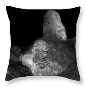 Growing Of Earth Throw Pillow