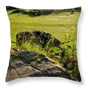 Growing On Rocks. Throw Pillow