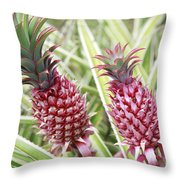 Growing Red Pineapples Throw Pillow