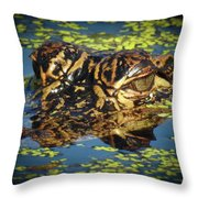 Growing Up Gator, No. 33 Throw Pillow