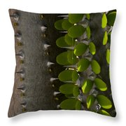 Growth Contrast Throw Pillow