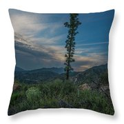 Growth Spurt To The Heavens Throw Pillow