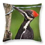Grub Time Throw Pillow