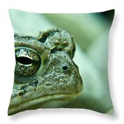 Grumpy Toad Throw Pillow