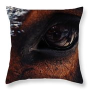 Guadalupe Mountains National Park Mule Throw Pillow