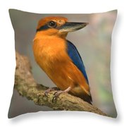 Guam Kingfisher Todiramphus Cinnamominus Throw Pillow