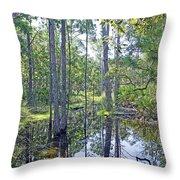 Guana Marsh Throw Pillow