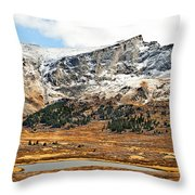 Guanella Pass Colorado Throw Pillow by Beth Riser