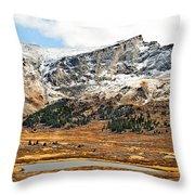 Guanella Pass Colorado Throw Pillow