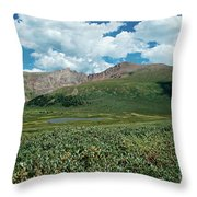 Guanella Pass Mt Bierstadt Throw Pillow by Michael Kirsh