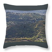 Guaraguao Throw Pillow