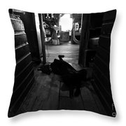 Guard Dog Throw Pillow by David Lee Thompson