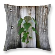 Guarded By The Ancients Throw Pillow