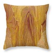Guardian Angel Throw Pillow by Linda Sannuti