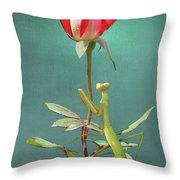Guardian Of The Rose Throw Pillow